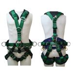 Image of the Buckingham Y STYLE RETRO HARNESS